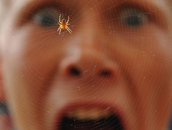 Soigner la phobie des insectes par l'hypnose