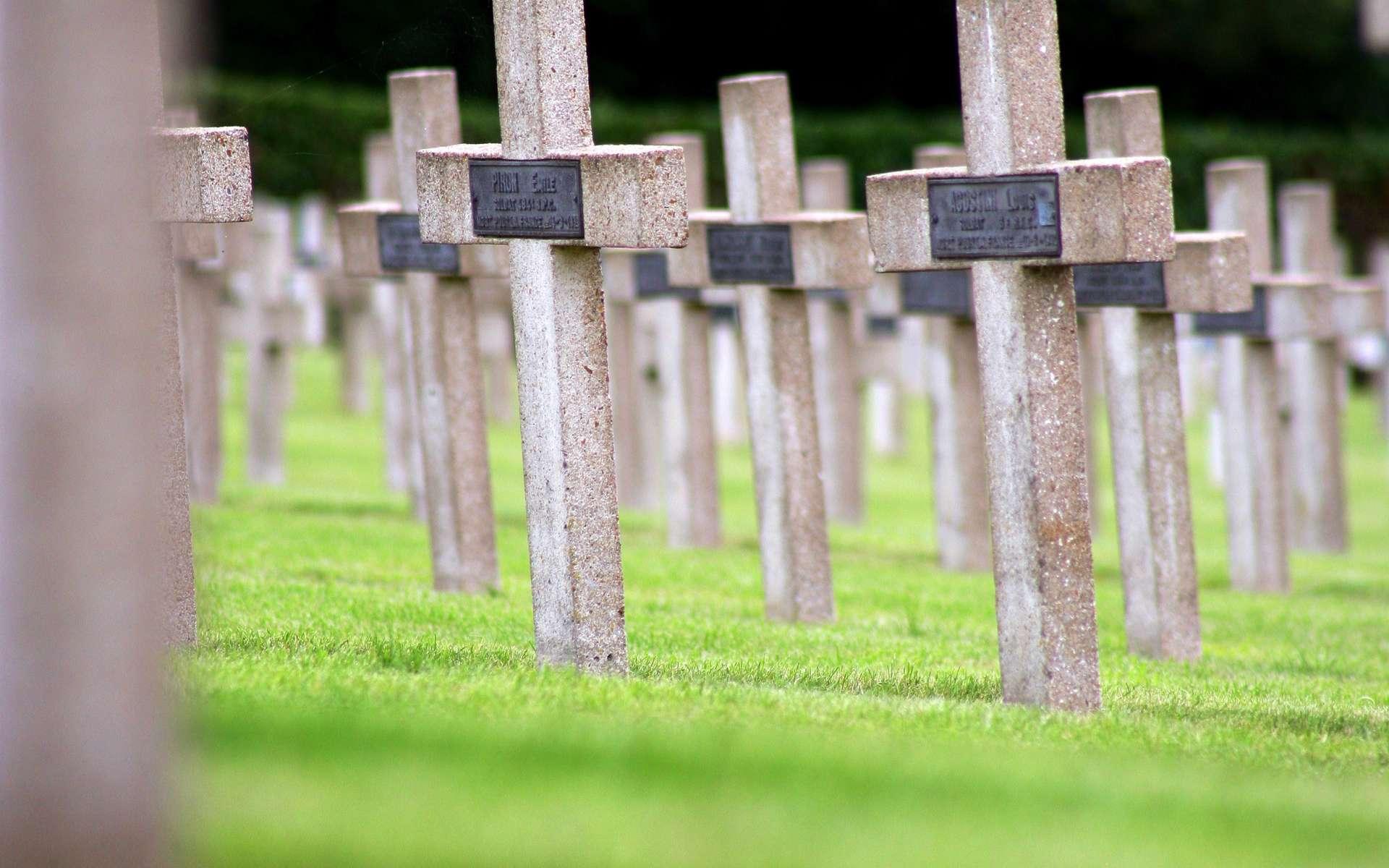 Soigner la phobie de la mort pour revivre